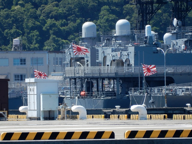 flag_s9900_DSCN2298s.jpg